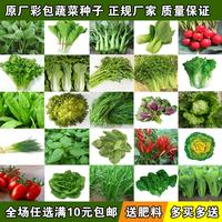 蔬菜种子四季播种阳台农家田园庭院春季冬季盆栽菜籽韭菜香菜种籽