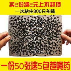 苍蝇贴强力粘苍蝇纸100张家用粘蝇板大号灭苍蝇贴餐厅捕蝇器50张