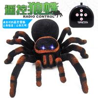红外线恶搞遥控黑寡妇蜘蛛电动爬行狼蛛仿真吓人创意整人整蛊玩具