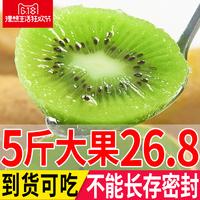 陕西绿心猕猴桃奇异果当季新鲜水果包邮批发非四川黄心红心约5斤