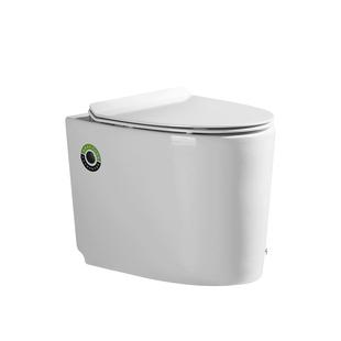 德国迷你家用水箱小号小户型坐便器