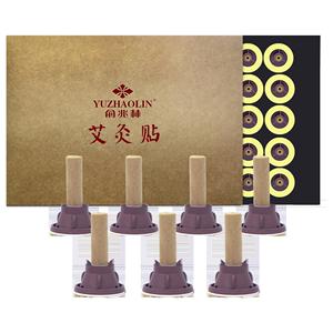 俞兆林艾艾艾灸贴艾灸盒随身灸家用艾条柱艾灸仪器宫寒熏蒸仪60粒