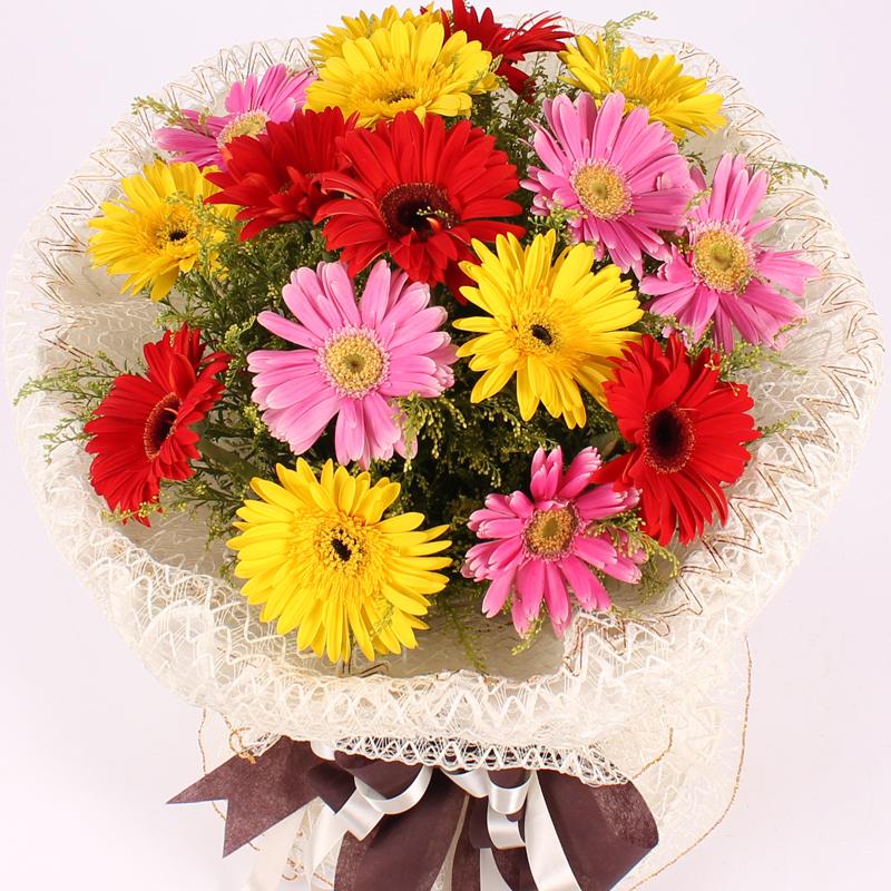 钦州花店同城速递 19朵扶郎花太阳花生日父亲节鲜花 全国送花上门