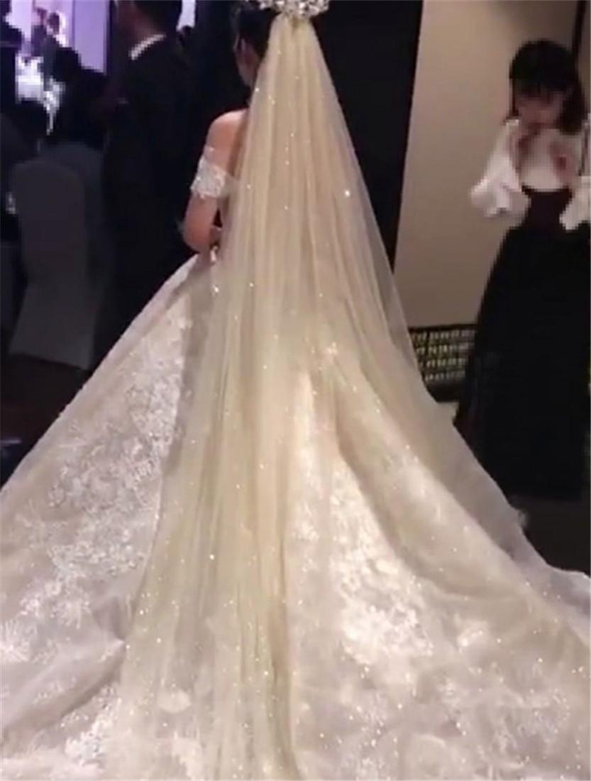 新款奢华香槟色喷金亮片抖音轻薄款闪亮头纱新娘婚纱配件定制