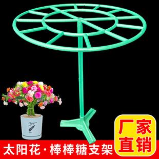 重瓣太阳花棒棒糖造型花架子固定架