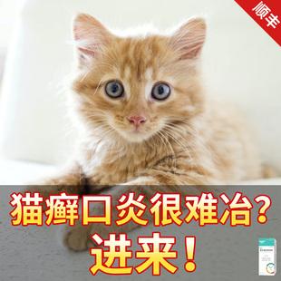 猫藓外用喷剂狗狗皮肤病猫咪猫癣喷雾预防宠物口炎内服药维生素b