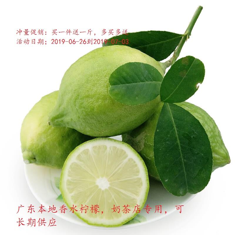 广东香水柠檬新鲜二级无籽无核果四季青柠檬奶茶店专用水果5斤装