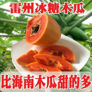 [2nd half price] Guangdong Leizhou rock sugar papaya green skin red milk 5 kg
