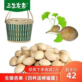 新鲜生白果生银杏果徐州特产500年银杏树1斤包邮送食谱开果器
