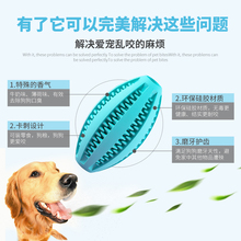 Dogs, toy balls, elastic balls, Teddy, golden hair, American, young, adult dogs, molars, teeth cleaning dogs, toy balls, pet toys.