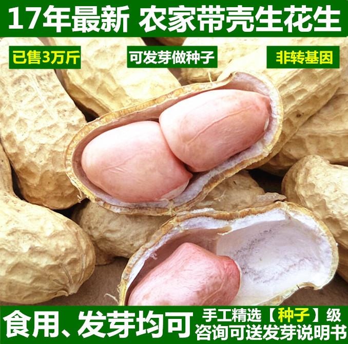 新鲜带壳生花生新花生农家自种生的晒干可发芽菜种子花生米5斤