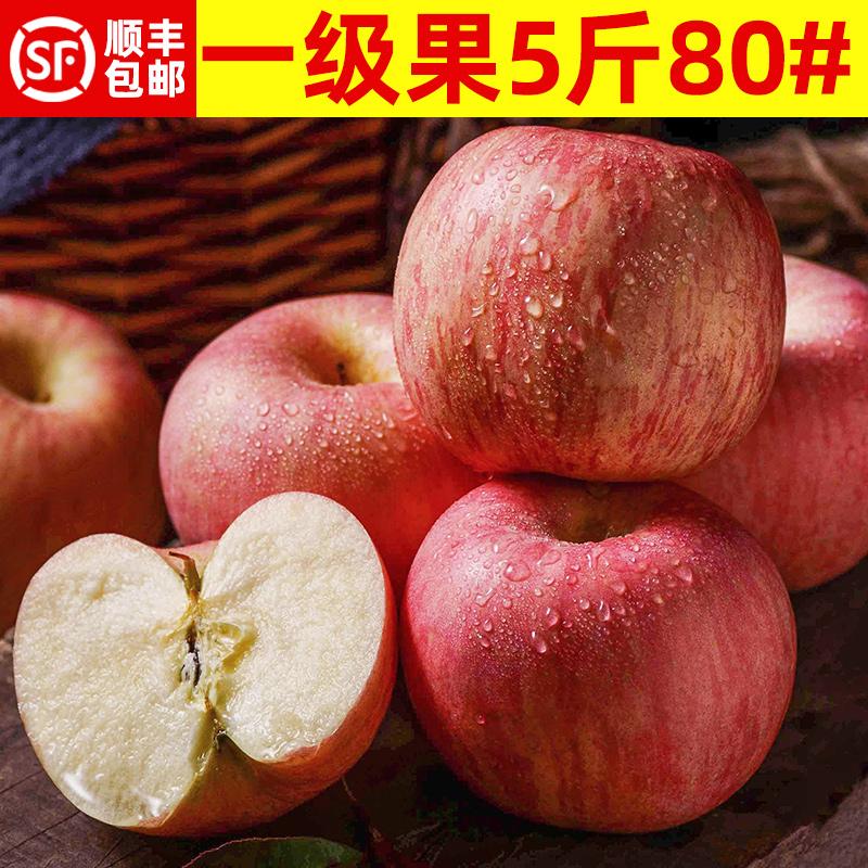 山东烟台红富士水果苹果新鲜一箱装应季吃的5斤批发包邮当季整箱