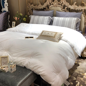 High-end feather protein winter quilt pure white five-star hotel thick warm quilt quilt double bed quilt winter