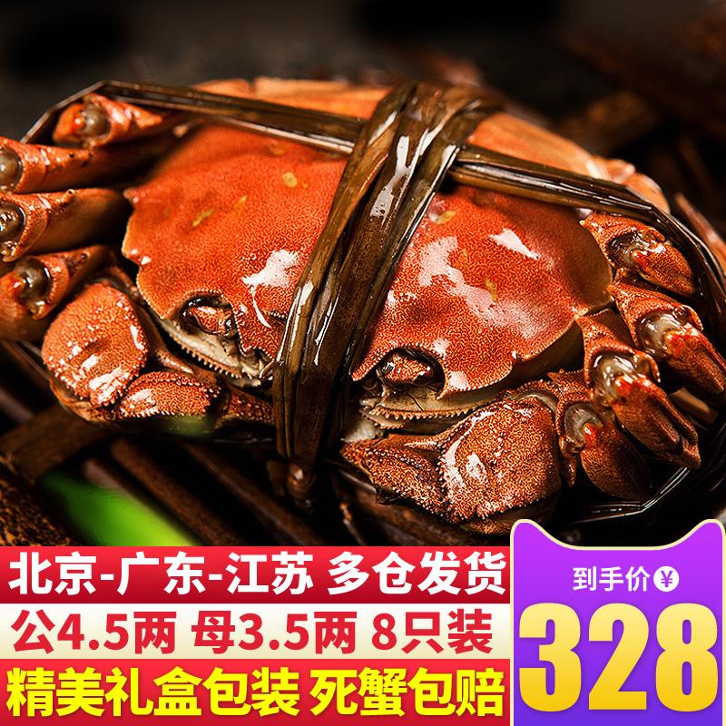大闸蟹礼盒公4.5两母3.5两8只鲜活超大特螃蟹阳澄湖大闸蟹协会