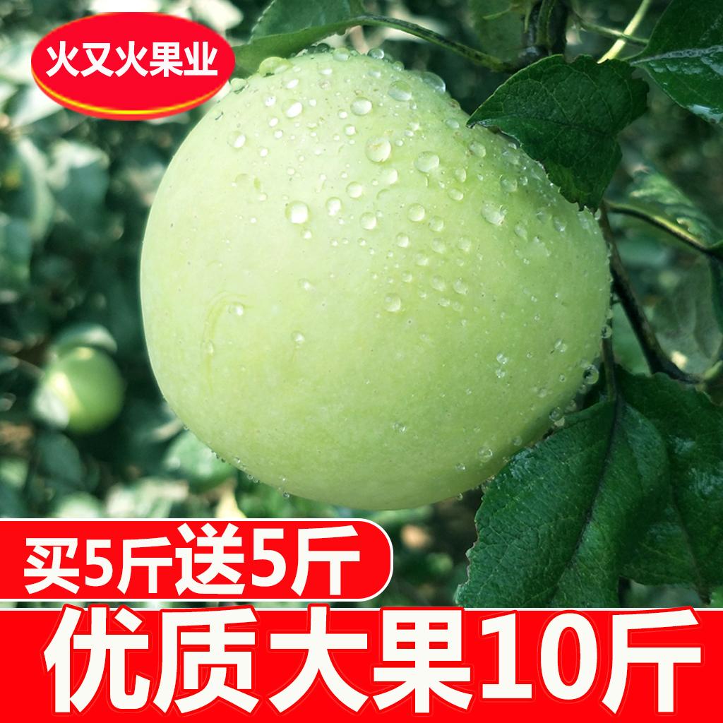 青苹果水果10斤包邮孕妇酸新鲜脆甜平果运城萍果非5斤红富士金帅