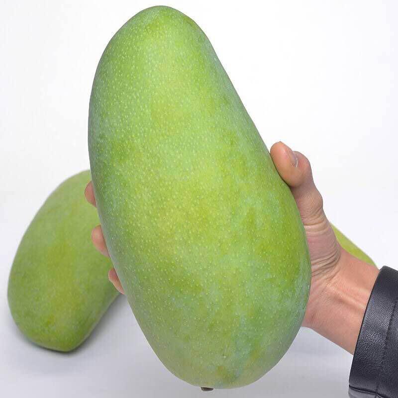 越南大青芒新鲜水果包邮 进口整箱10斤特大青皮芒果甜心热带