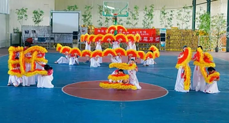 舞蹈扇扇纱双面扇色大号长扇舞扇民族风秧歌舞长两色红扇子纱
