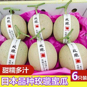 Japanese Variety Melon Melon 6 Pack Shizuoka Yubari Reticulated Melon Cantaloupe Melon Fresh Fruit