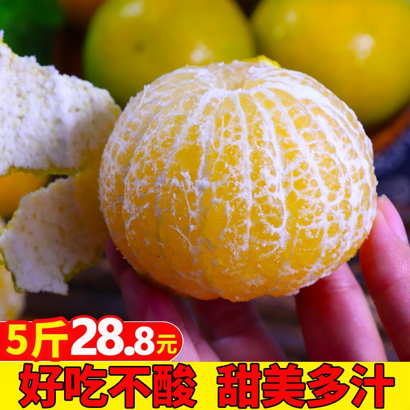 新鲜皇帝柑5斤 广西当季桔子水果贡柑蜜桔柑橘整箱10多汁橘子包邮