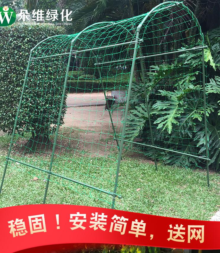 朵维葡萄架花藤架百香果架子火龙果植物攀爬花支架杆固定户外稳固