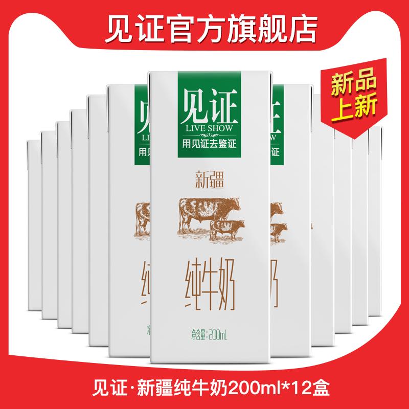见证新疆纯牛奶整箱200ml*12盒学生儿童营养早餐奶全脂纯奶
