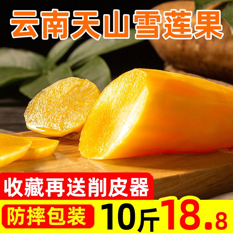 云南高原天山雪莲果新鲜10斤红心特级整箱包邮红泥黄心当季水果5