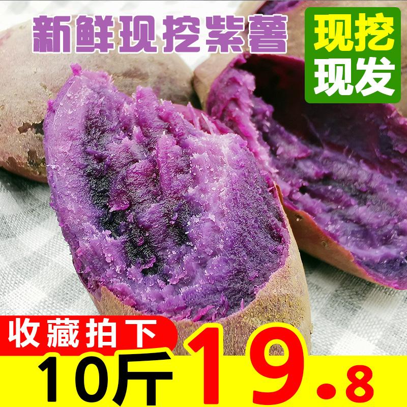 紫薯新鲜整箱10斤地瓜农家现挖蜜薯小个板栗糖心红薯番薯紫心山芋