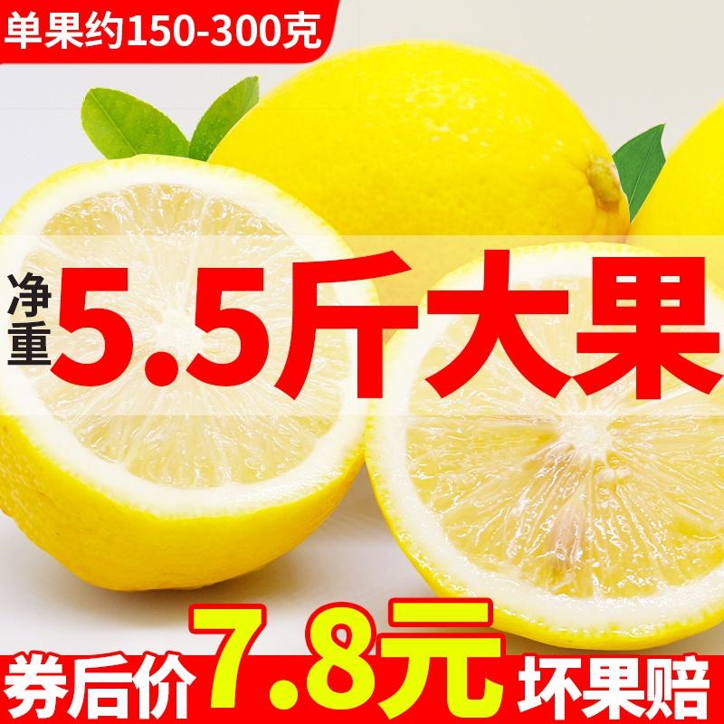 净重5.5斤大果安岳黄柠檬新鲜皮薄一二级青香应当季水果非小金桔