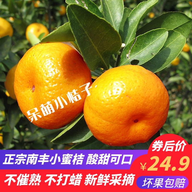 江西南丰桔子新鲜蜜橘甜桔子迷你橘子非沙糖桔贡桔水果小桔5/10斤