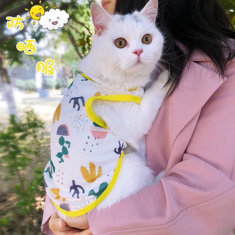 网红猫咪衣服背心式春夏季薄款泰迪狗狗小型犬防晒衣小奶猫防掉毛