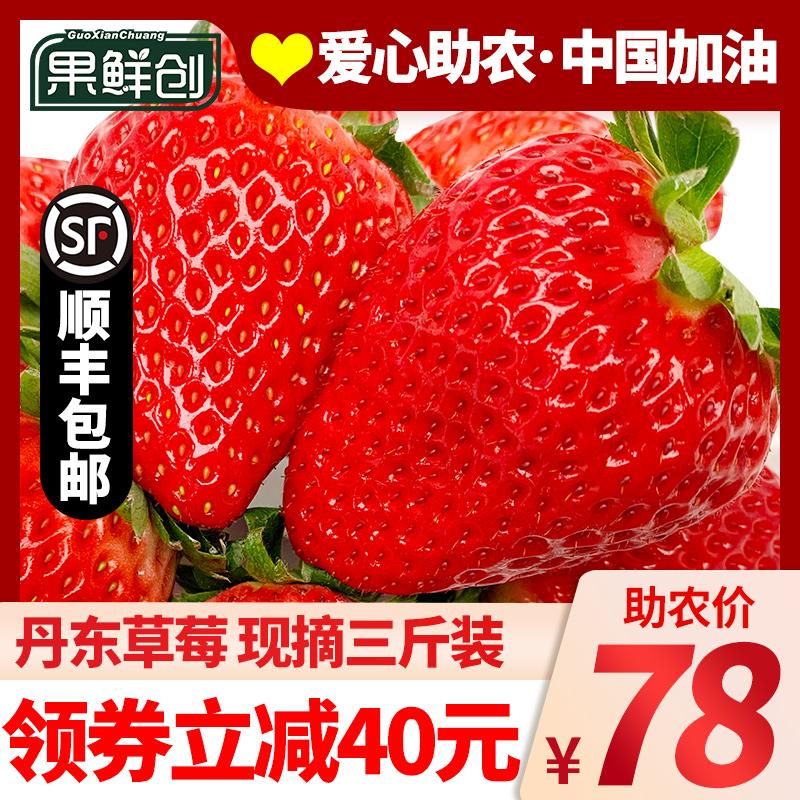 丹东99大草莓红颜牛奶新鲜奶油孕妇九九久久巧克力草梅水果包邮