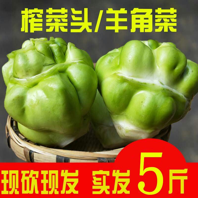 【绿色蔬菜】包邮四川农家新鲜青菜头特产榨菜头芥菜羊角菜 5斤装