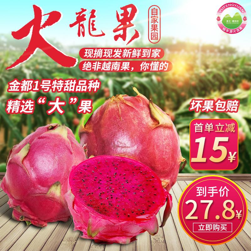 金都一号红心火龙果蜜宝新鲜水果红肉大果新鲜包邮5斤10斤实惠装