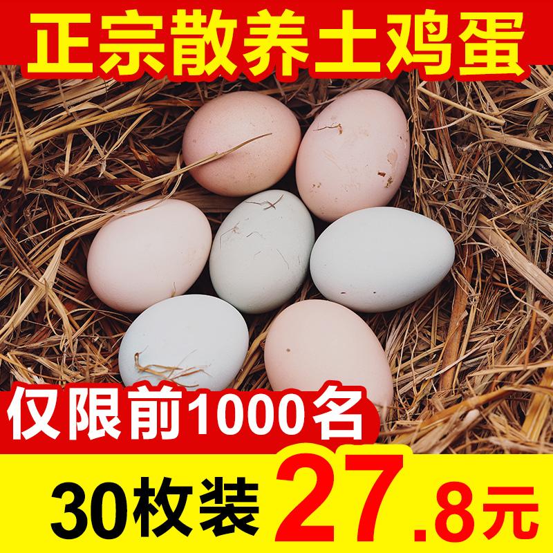 正宗农家散养土鸡蛋新鲜30枚无菌鸡蛋放养初生蛋草鸡蛋笨鸡蛋