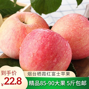 果百淘 山东烟台栖霞红富士苹果当季新鲜水果脆甜产地直发包邮