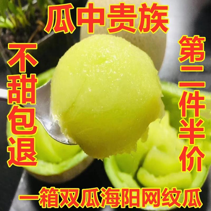 海阳网纹蜜瓜哈密瓜玲珑瓜约4.5斤口口蜜新鲜助农水果5日本静冈瓜