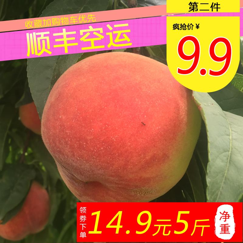 14.8元5斤现摘现货甜蜜水蜜桃脆甜桃子新鲜当季孕妇水果雪桃毛桃