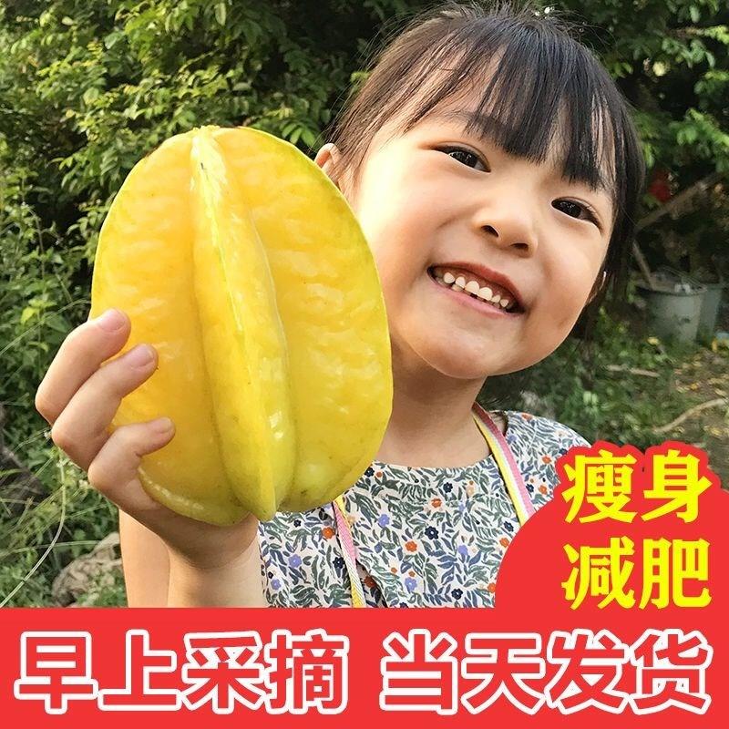 福建漳州甜杨桃5斤水果当季洋桃新鲜整箱红扬桃10清甜羊桃鲜阳桃