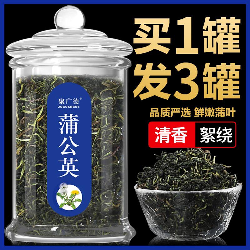 蒲公英茶野生天然正品特级茶叶整根婆婆丁新鲜蒲公英浦公英干花茶