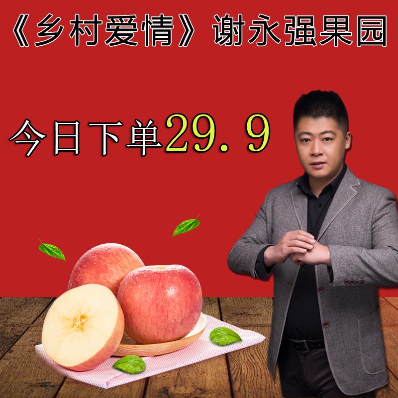 谢永强果园 现摘脆甜大苹果