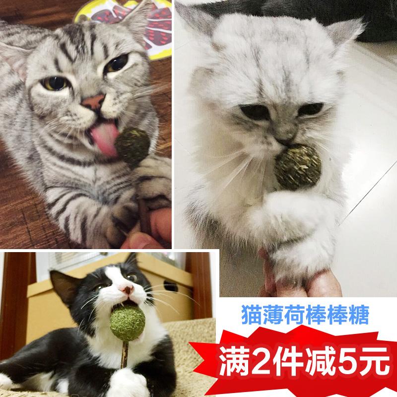 猫咪玩具用品猫薄荷棒棒糖逗猫棒磨牙洁齿木天蓼棒猫草猫零食