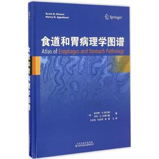 食道和胃病理学图谱 (美)斯科特·R.欧文斯(Scott R.Owens),(美)亨利·D.艾佩尔曼(Henry D.Appelman) 著;王东旭 等 译 内科学