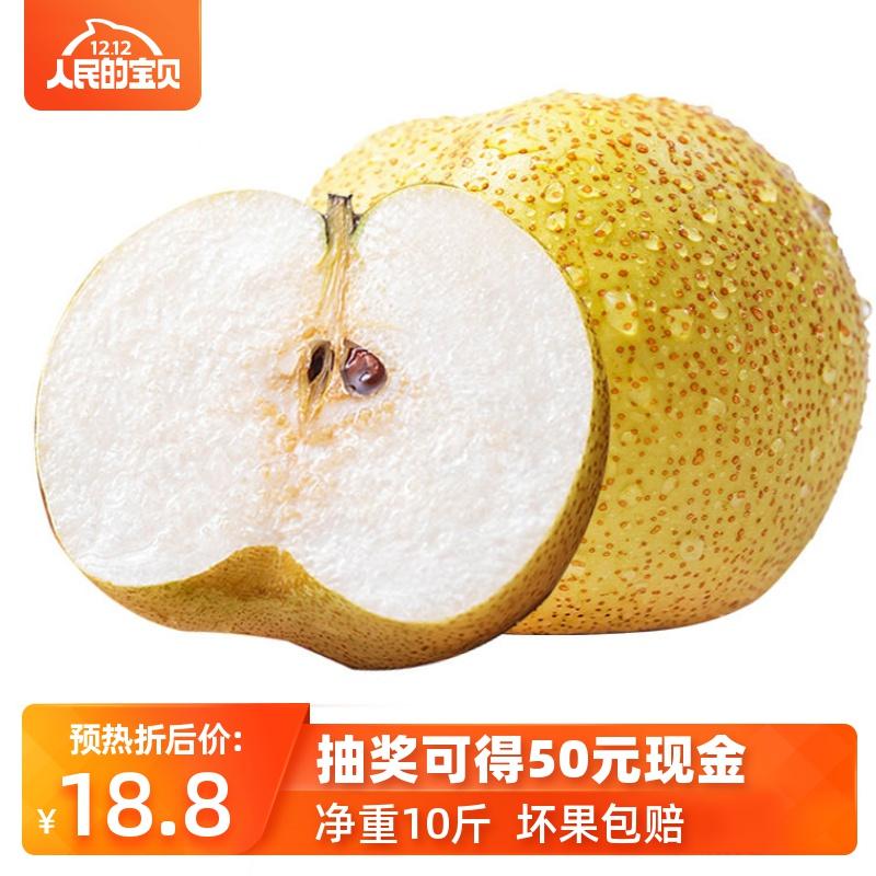 应季砀山酥梨新鲜脆软梨青皮香梨整箱水果金冠梨10斤包邮雪梨超甜