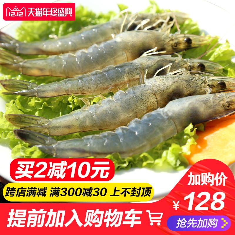 青岛海捕大虾鲜活海鲜水产冷冻发货新鲜对虾青虾14cm