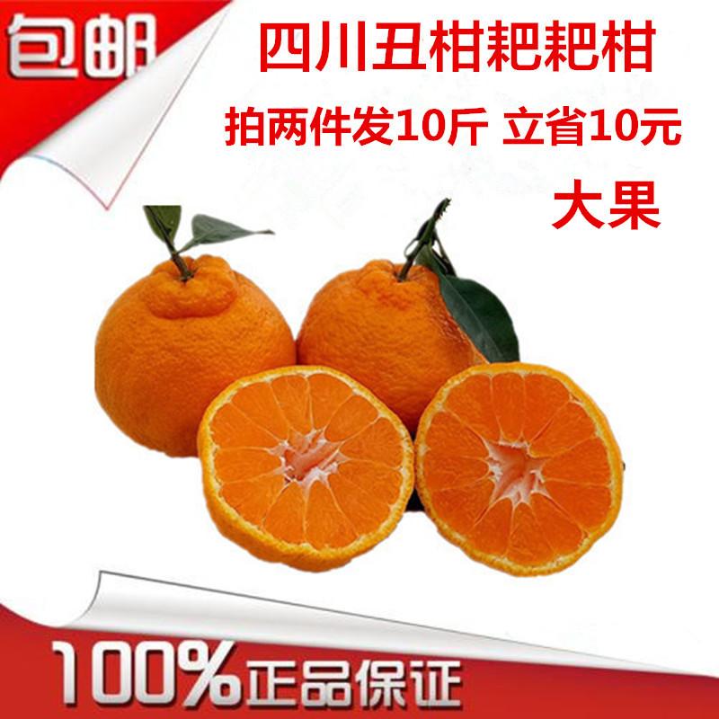 四川 柑橘 孕妇 水果 柑桔 橘子 不知 丑八怪