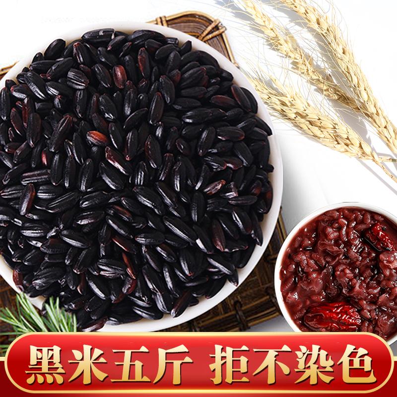 黑米5斤 无染色黑香米新米散装东北农家自产杂粮紫米黑米粥乌米