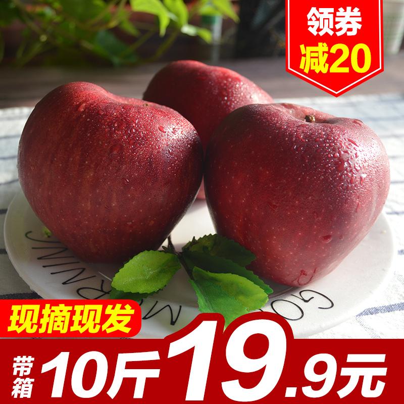 甘肃天水花牛苹果刮泥粉面孕妇应季新鲜水果带箱10斤包邮红蛇果