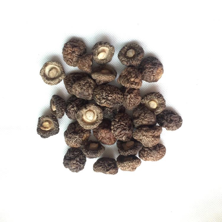 西峡香菇100克 香菇 剪根 冬菇 干香菇 香菇干货  包邮