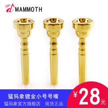 Mammoth gold-plated trumpet nozzle 3C5C7C trumpet nozzle for beginners of mechanics