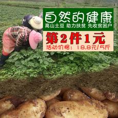土豆新鲜马铃薯5斤迷你小土豆农家肥种植高山洋芋黄心种子大土豆